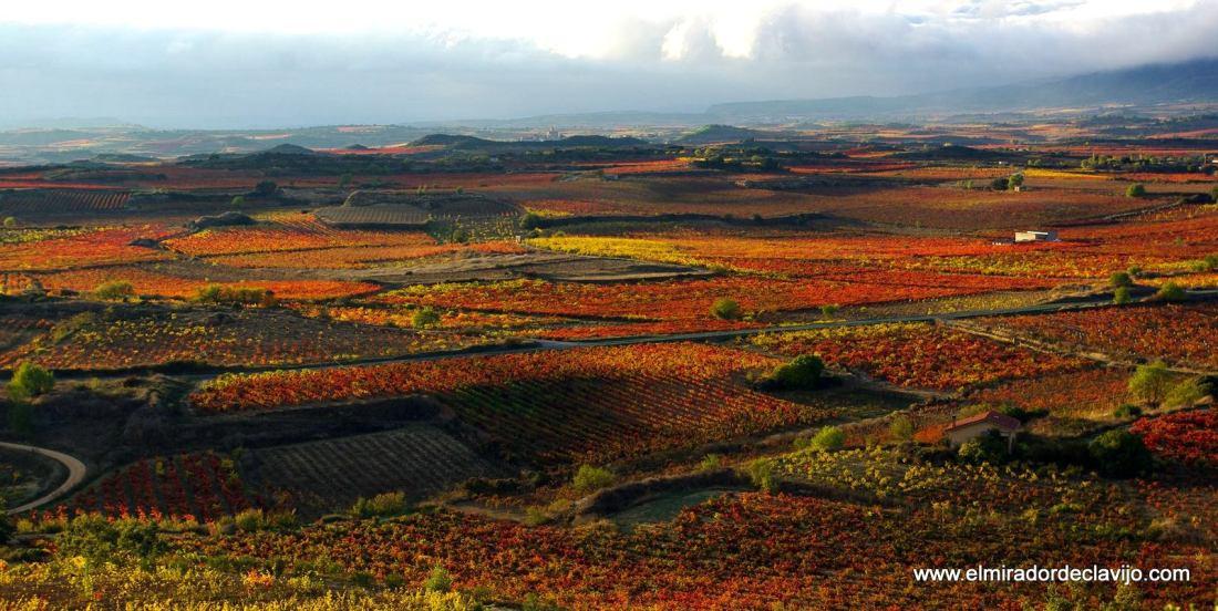 Colores del otoño en de La Rioja